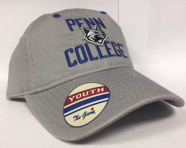 Image For Youth Gray Penn College Wildcat Hat