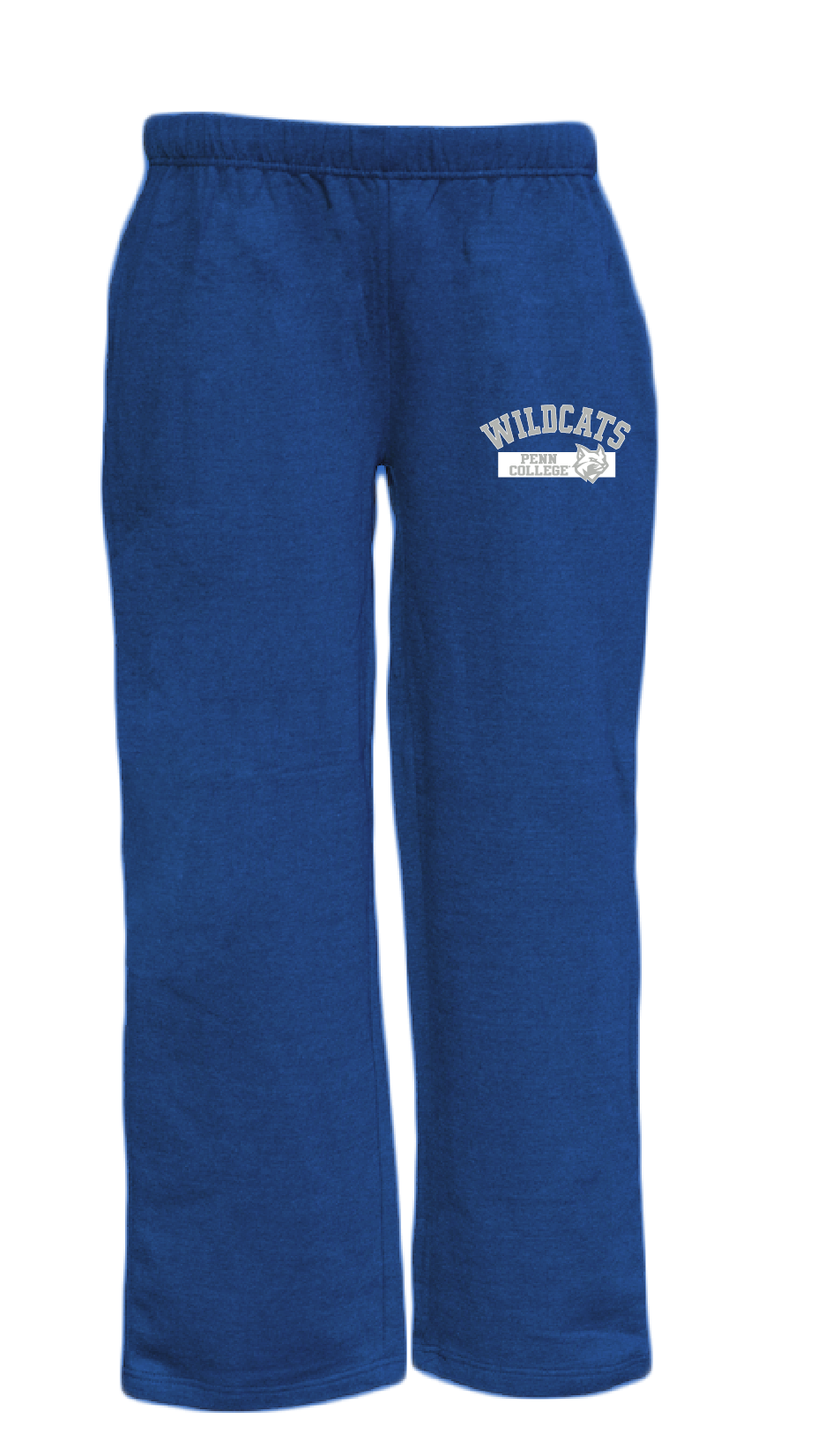 Image For Youth Royal Blue Penn College Wildcats Sweat Pants