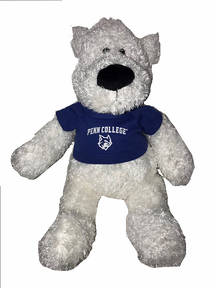 Image For FRANCIS TEDDY BEAR