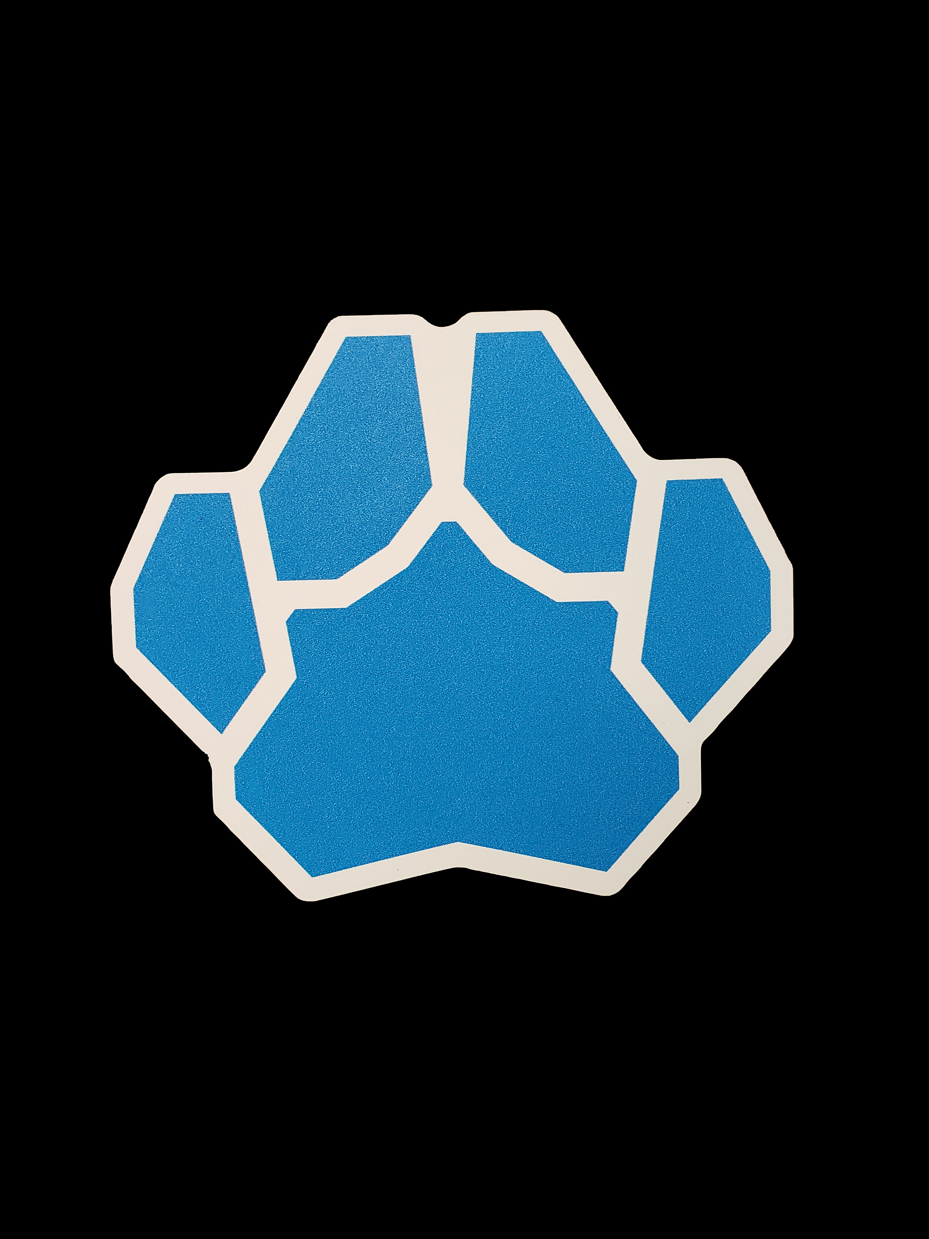 Cover Image For PAW PRINT AUTOMOTIVE MAGNET