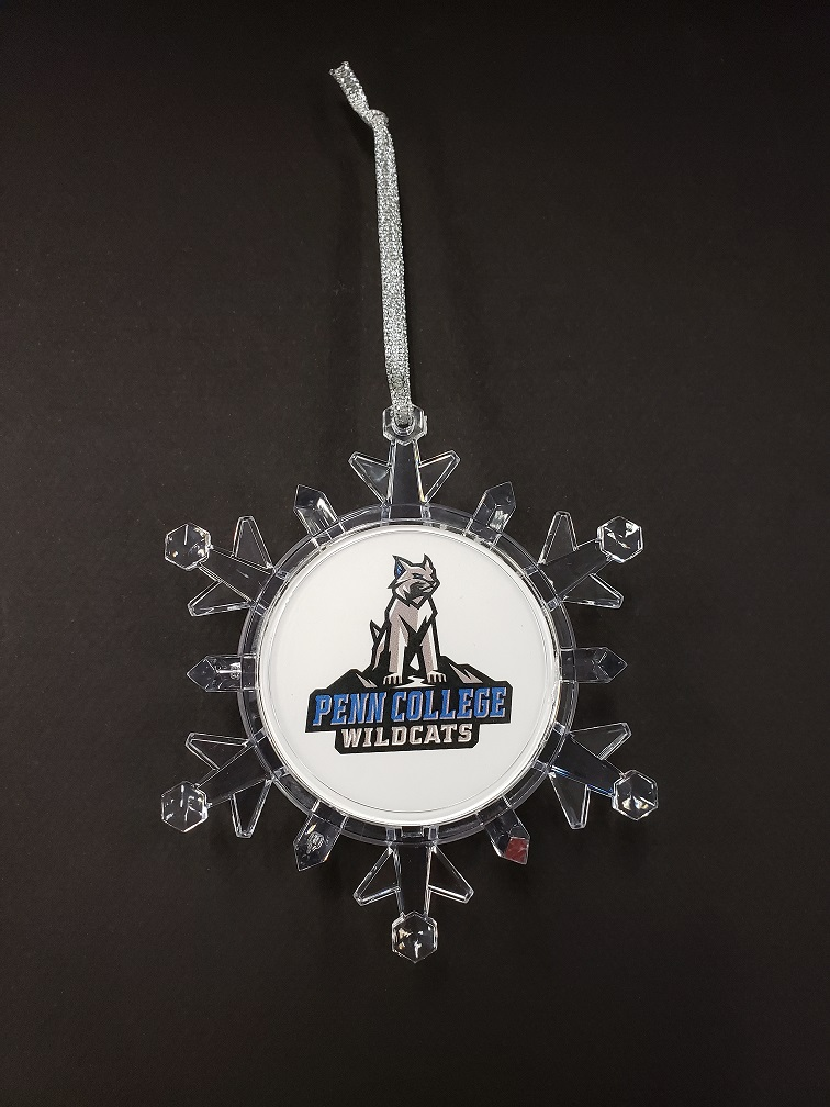 Image For SNOWFLAKE LIGHT UP ORNAMENT. ON SALE!!!