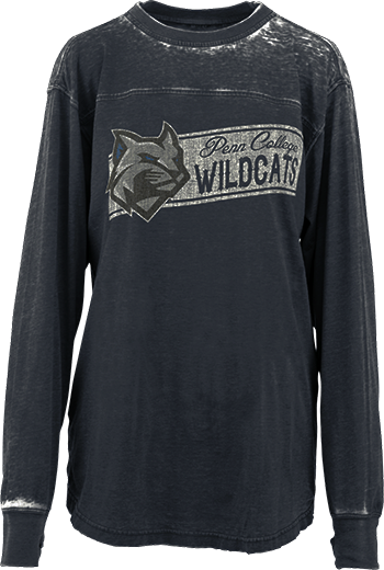 Cover Image For Grey Long Sleeve Wildcat Tee