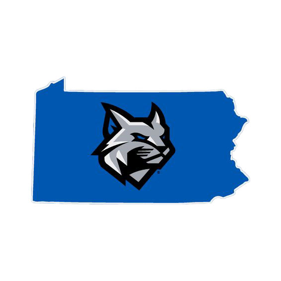 Cover Image For PENNSYLVANIA WILDCAT HEAD AUTOMOTIVE DECAL