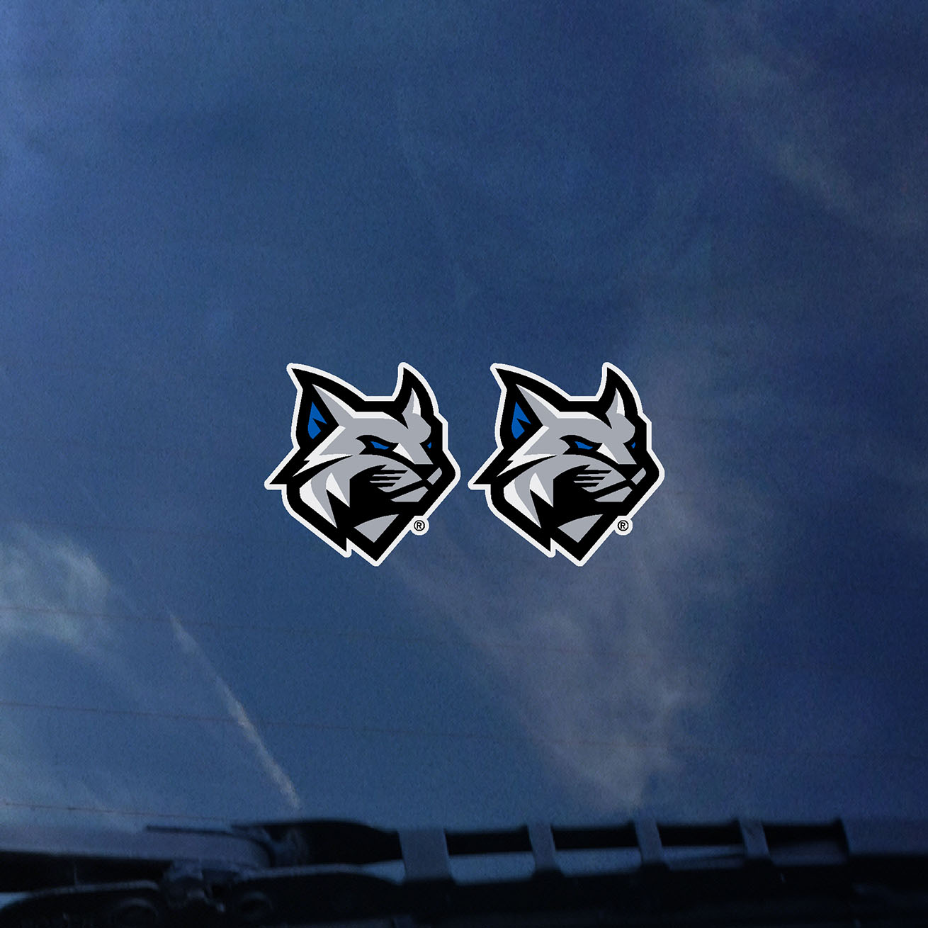 Cover Image For Small Wildcat Head Decals 2 Pack